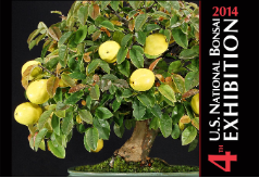 4th U.S. National Bonsai Exhibition Album