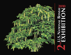 2nd U.S. National Bonsai Exhibition Commemorative Album