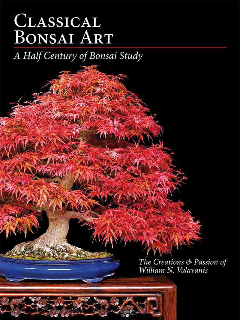 Commemorative Albums Let You View Japanese International Bonsai Exhibitions